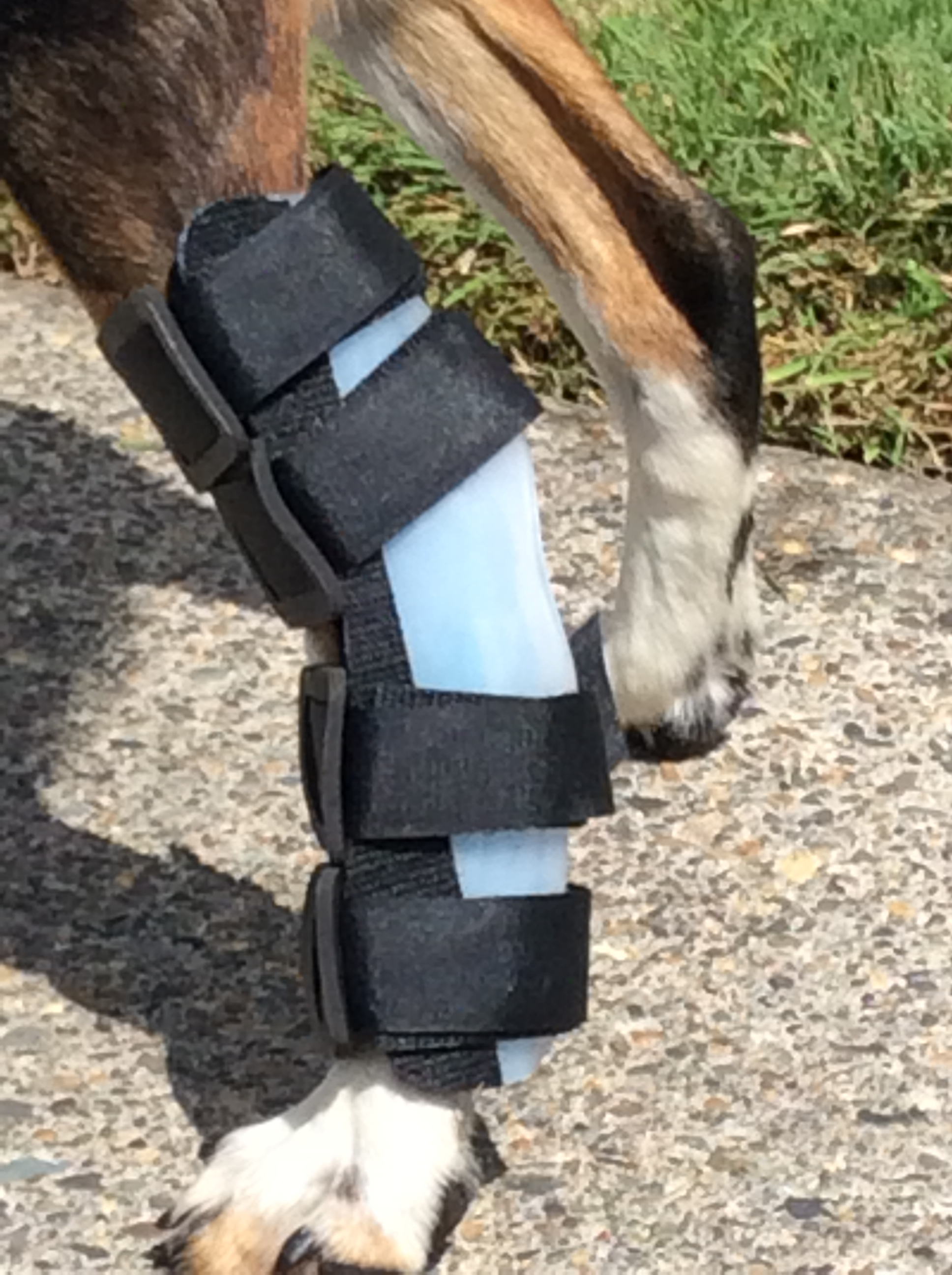 how to make a dog leg splint